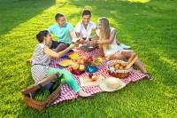 Международен ден на пикника