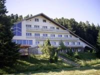 Хотел Бор, Паничище