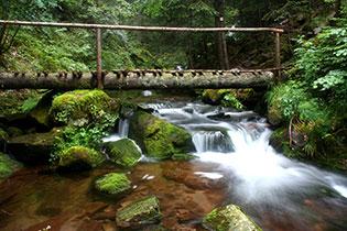 Каньона на водопадите, Смолян